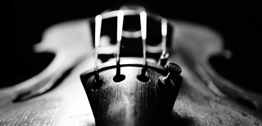 viool1